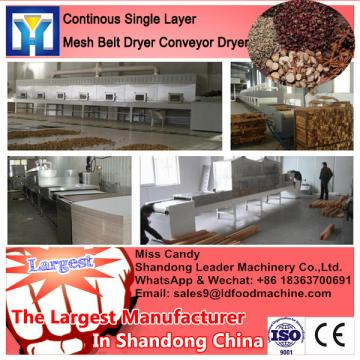 Large Yield Mango Mesh Belt Dryer/Conveyor Dryer