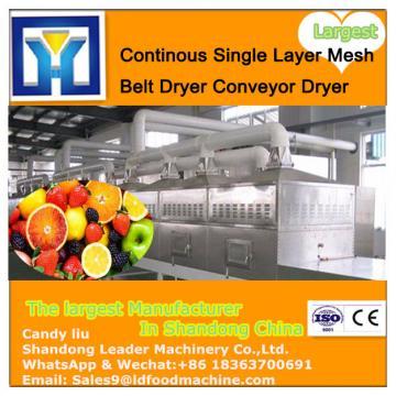 Large Yield Mango Mesh Belt Dryer/Conveyor Dryer