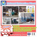 popular small scale palm oil refining machinery