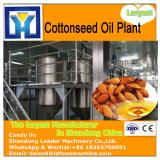 High efficiency small palm kernel oil press with  service