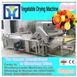 fresh vegetable dryer / Balsam pear, ginger dryer machine