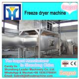 Jackfruit vacuum freeze drying equipment freeze dryer 30m2
