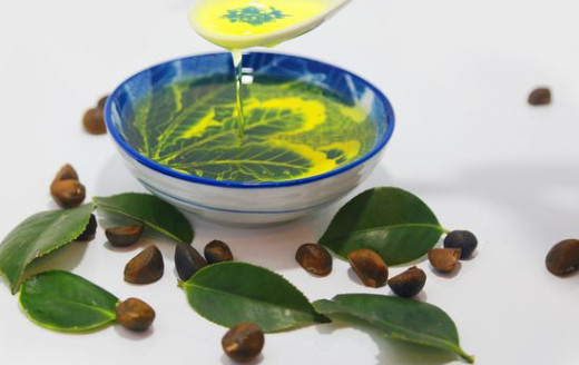 Healthy edible oil with broad prospects -- camellia seed oil