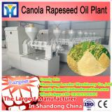 10-100T/Hour Turnkey Palm oil production line